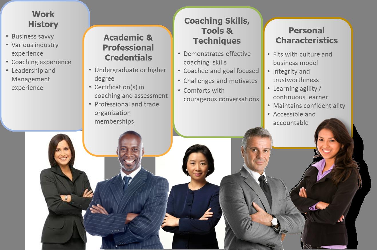 CareerCurve Coach Criteria